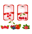 two labels with cherries vector image vector image