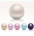 ealistic pearl set vector image