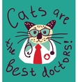 Cute cat fun doctor card and sign vector image