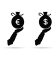 euro and dollar in bag black vector image