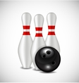 Skittles and Bowling Ball Background vector image