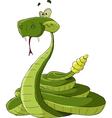rattlesnake vector image