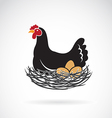 Hen laying eggs in its nest vector image