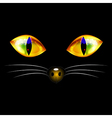 Cat Eyes and Nose vector image