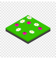 meadow landscape isometric icon vector image