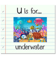 Flashcard letter U is for underwater vector image