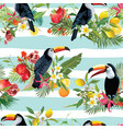 tropical fruits flowers and toucan background vector image