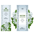 two vertical banners with white lilacs vector image