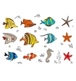 Set with coral fishes vector image
