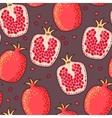 Seamless pomegranate vector image