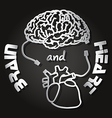 paper cut of brain and heart vector image