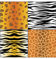set of animal skins vector image
