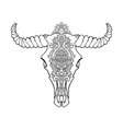 mandala tattoo style dead cow head decorative vector image