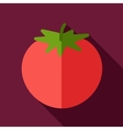 Tomato flat icon with long shadow vector image