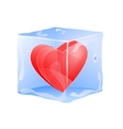 red heart frozen in ice cube vector image vector image