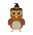 owl with a witch hat vector image
