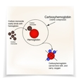 Carboxyhemoglobin Joining the hemoglobin carbon vector image