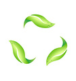 recycling leaf symbol vector image vector image