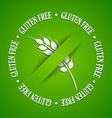 Gluten free sign vector image