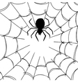 Spider Web 4 vector image
