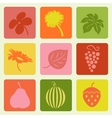 Nature pictures set vector image vector image