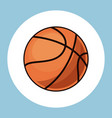 basketball ball equipment icon vector image