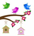 birds colorful and birdhouse on tree branches vector image