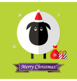 Christmas Card with Sheep over Green vector image