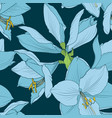 hippeastrum amaryllis seamless pattern blue navy vector image