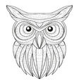 Hand drawn doodle outline owl vector image