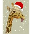 Christmas face of giraffe vector image