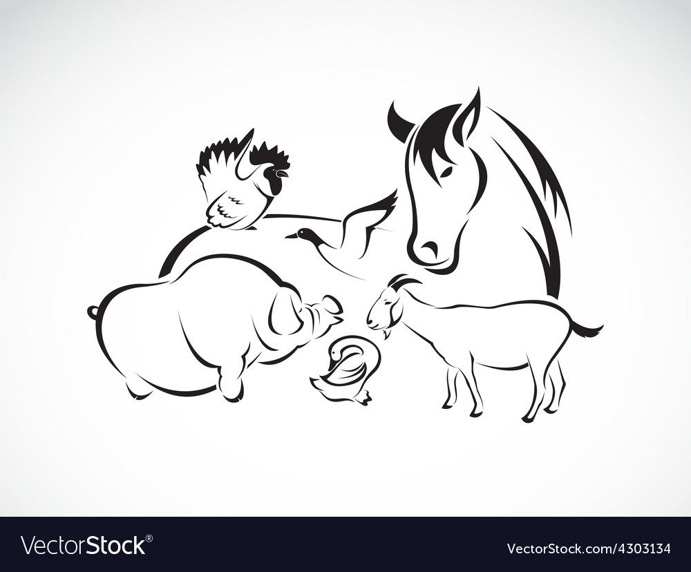 Animals farm set vector