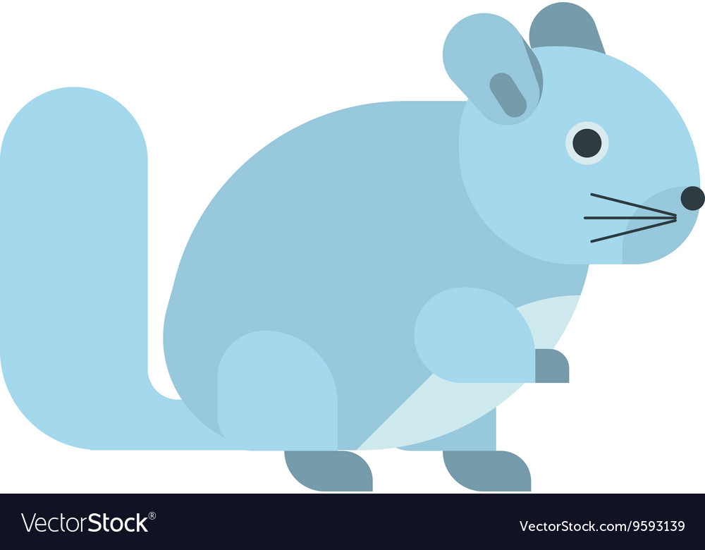 Squirrel isolated vector