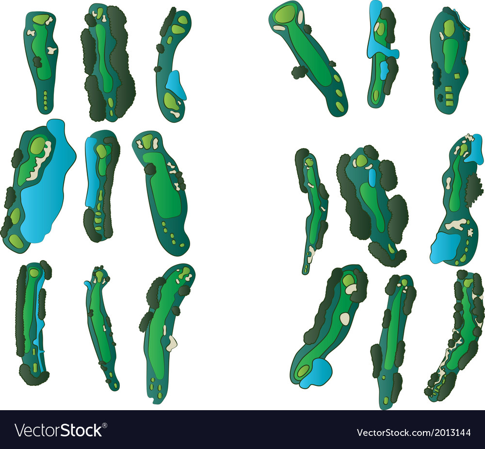 Golf holes vector