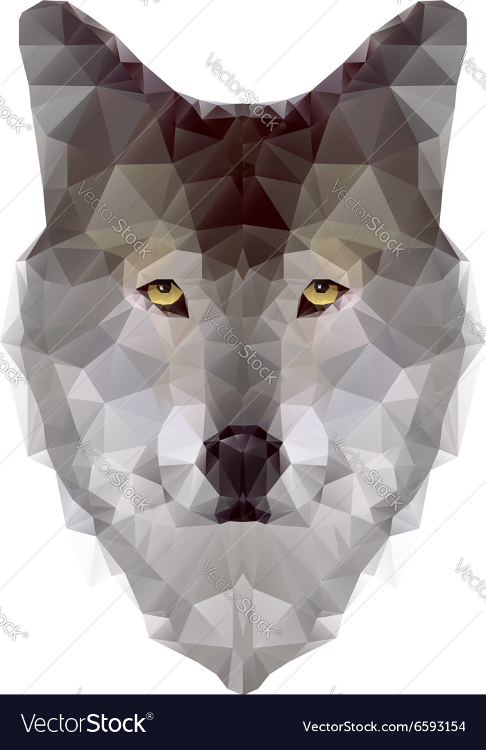 Wolf triangle vector