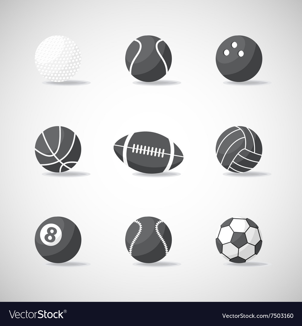 Black and white sports balls vector