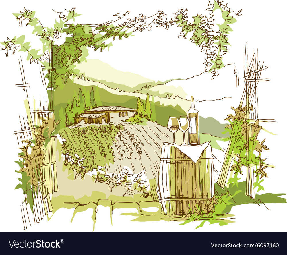 Hand made sketch grape fields and vineyards vector