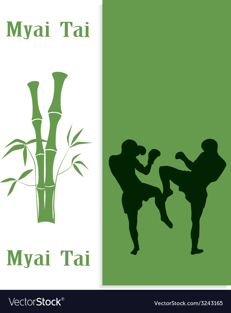 Two men are engaged in myai tai vector