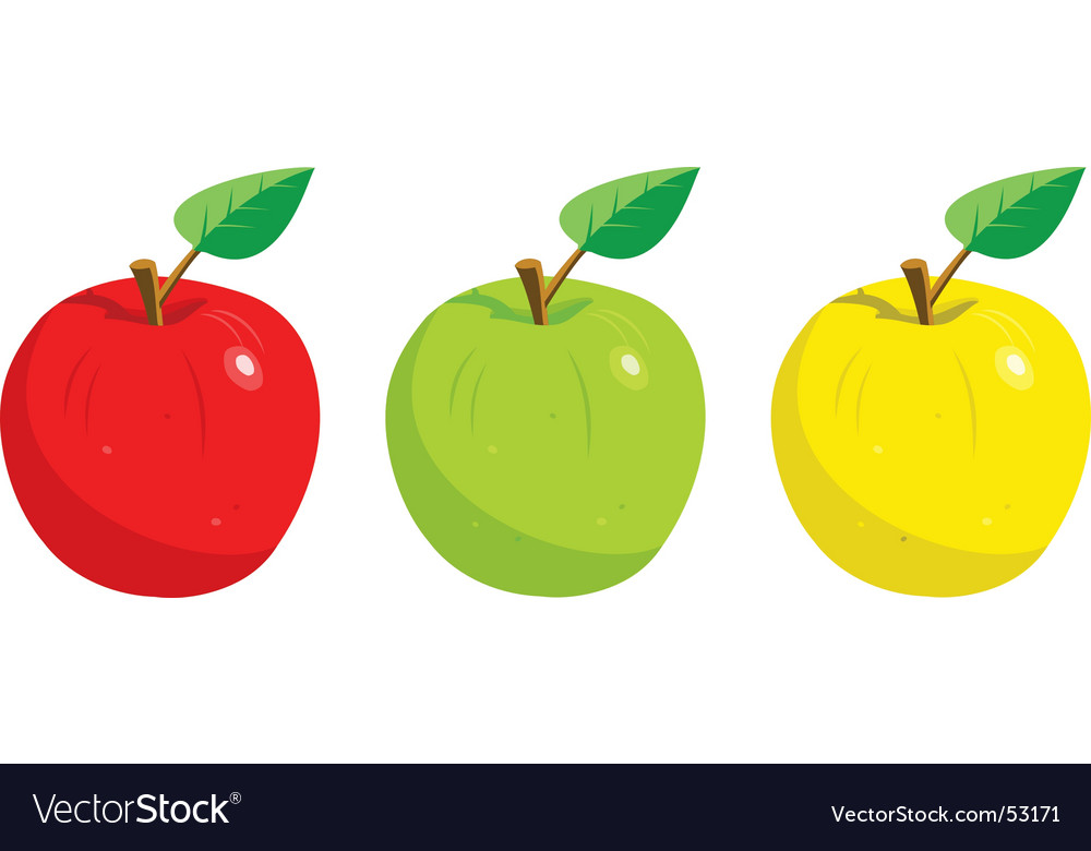 Apples with leaf vector