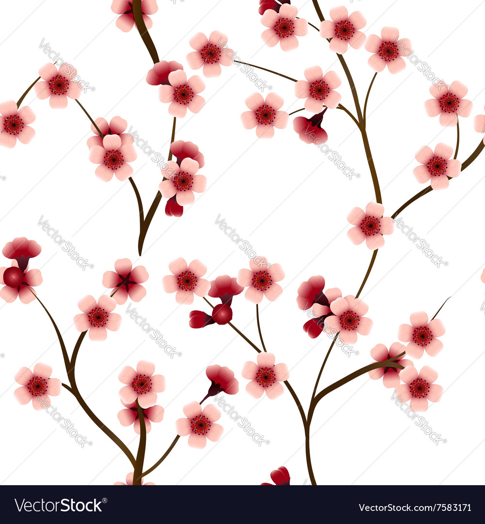 Seamless pattern with pink cherry flowers vector