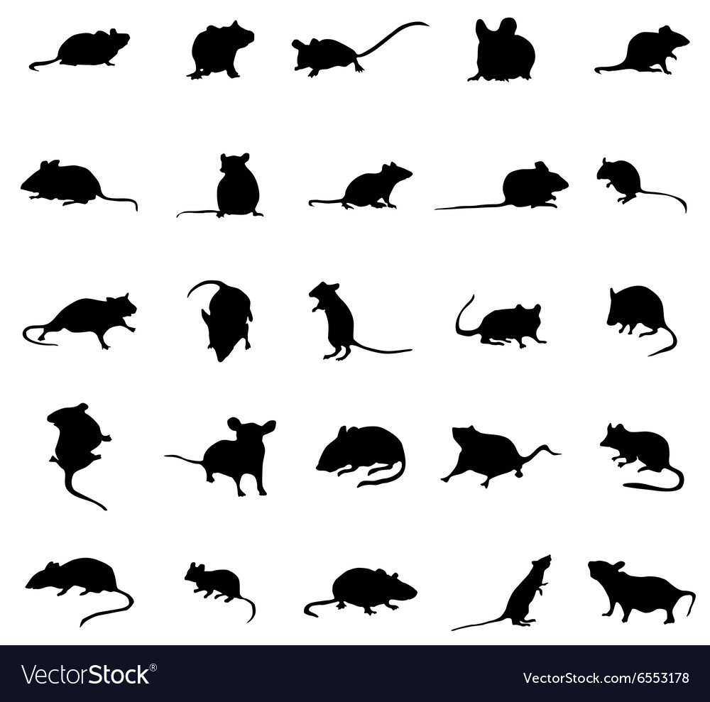 Mouse silhouettes set vector