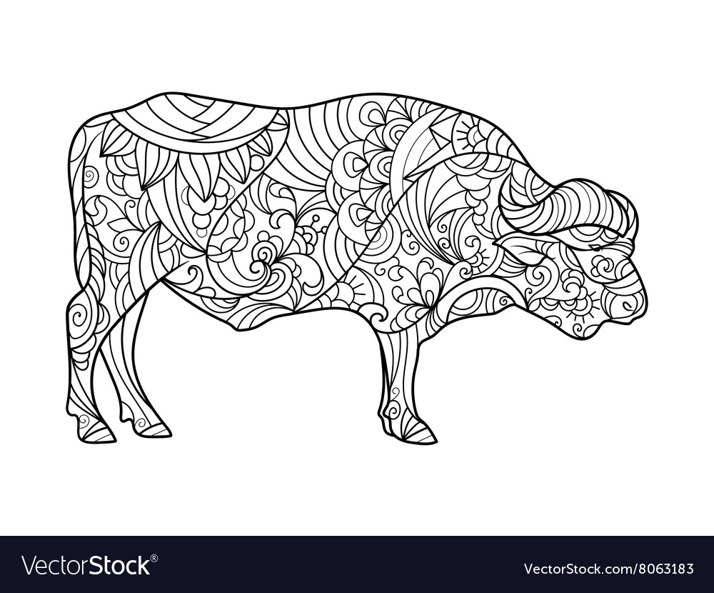 Buffalo animal coloring book for adults vector