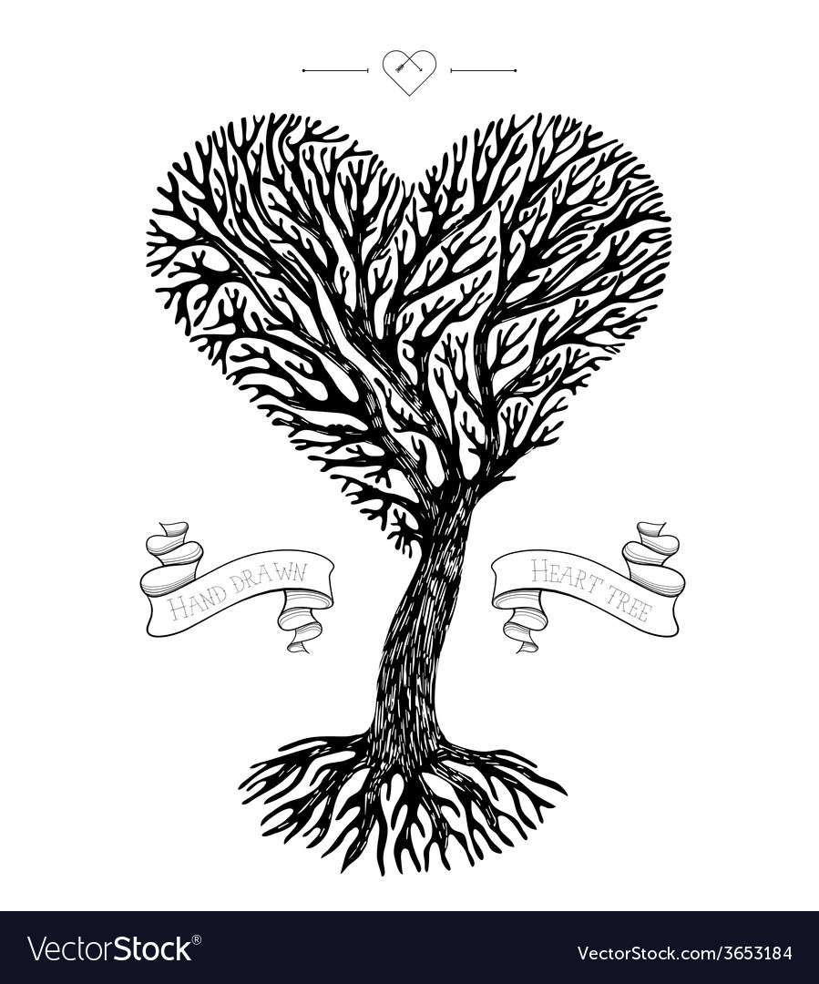 Tree crown like heart vector