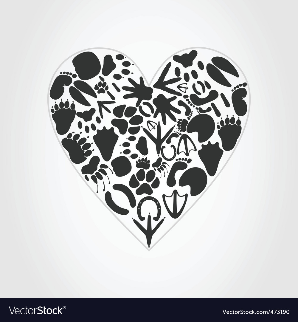 Animal heart vector
