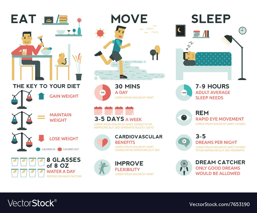 Eat move sleep vector