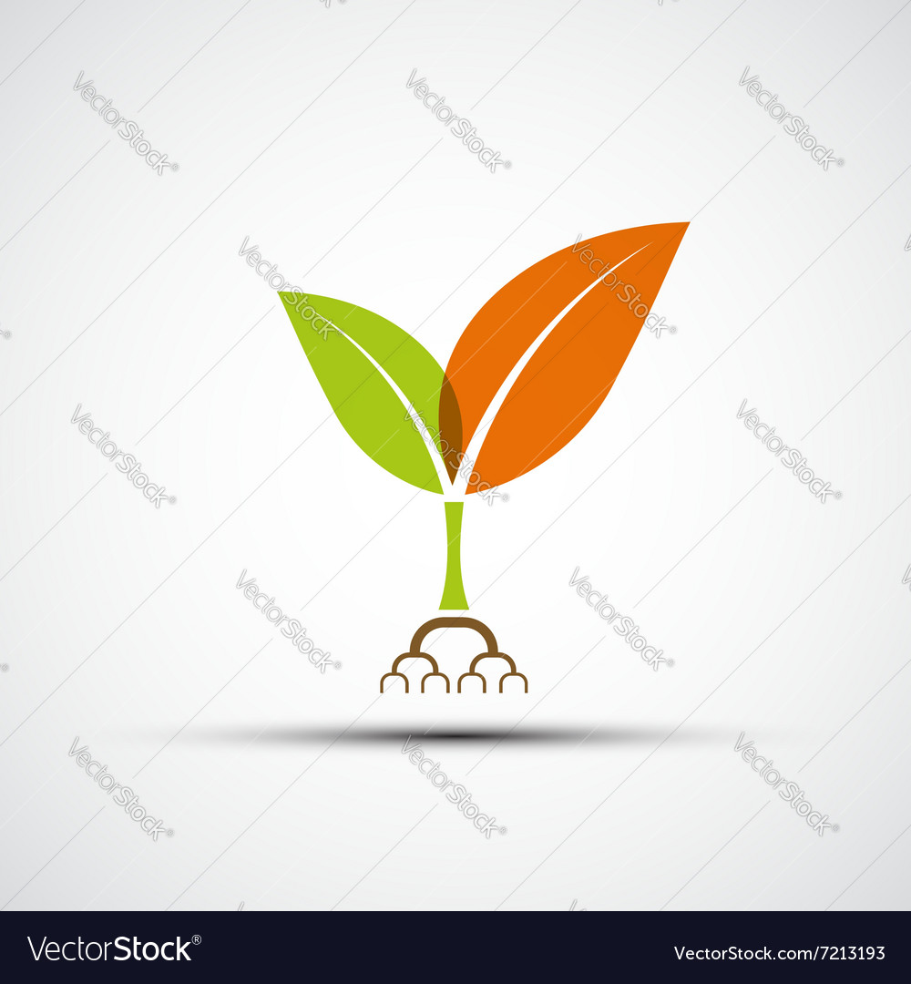 Logo plants with colorful leaves vector