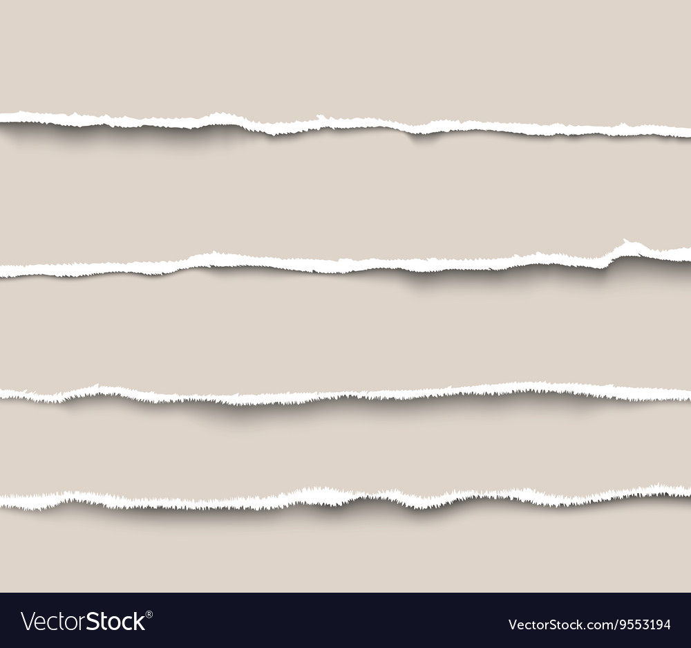 Set of torn paper dividers for websites and vector