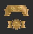 gold premium design template vector image