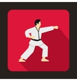 Karate fighter icon flat style vector image