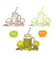 Set of smoothies detox water and drinks vector image